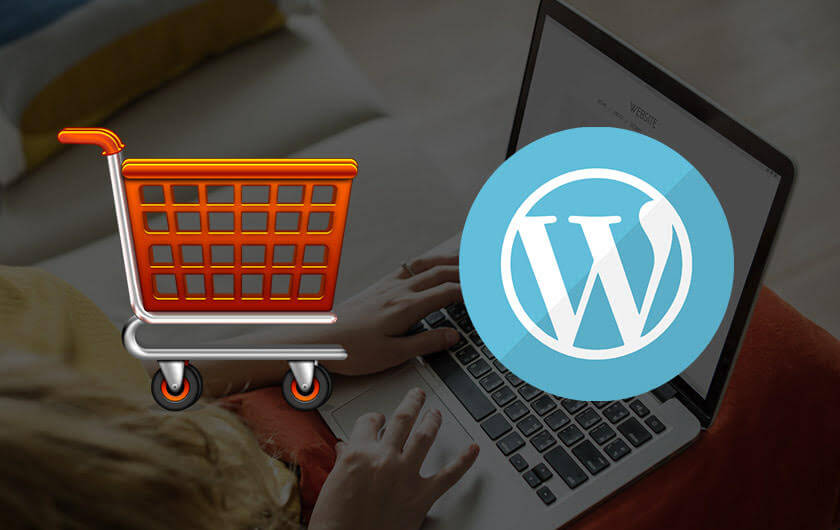 How to choose the Best WordPress themes for your eCommerce shop?