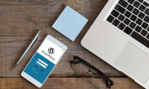 Why Online Marketers Fall In Love with WordPress